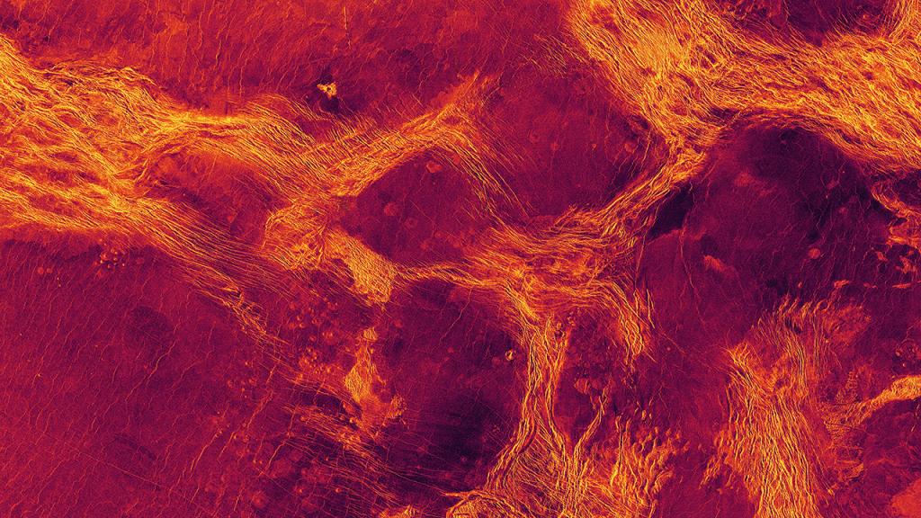 Tectonic movements on Venus
