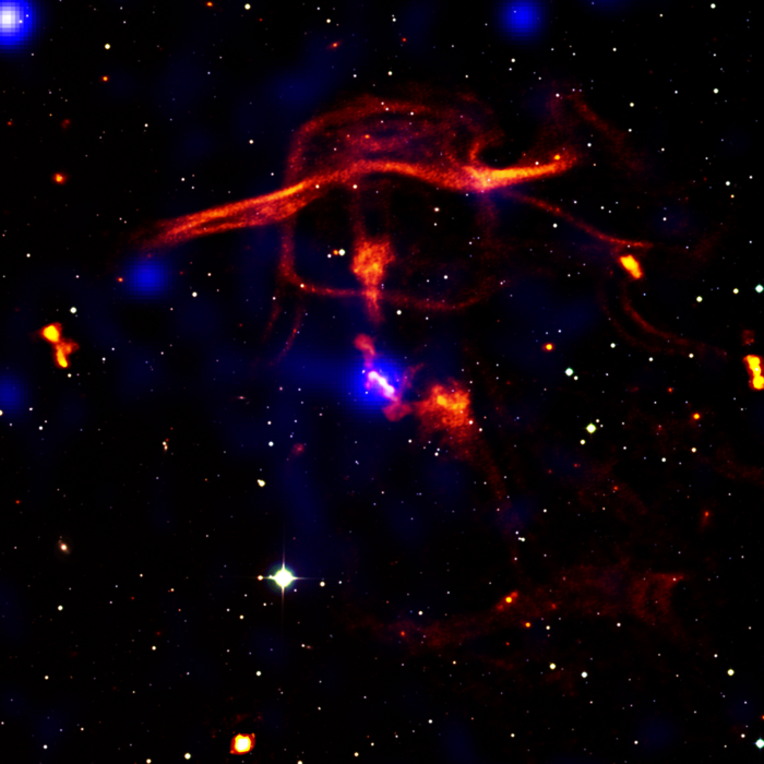 Black holes determine the evolution of the universe